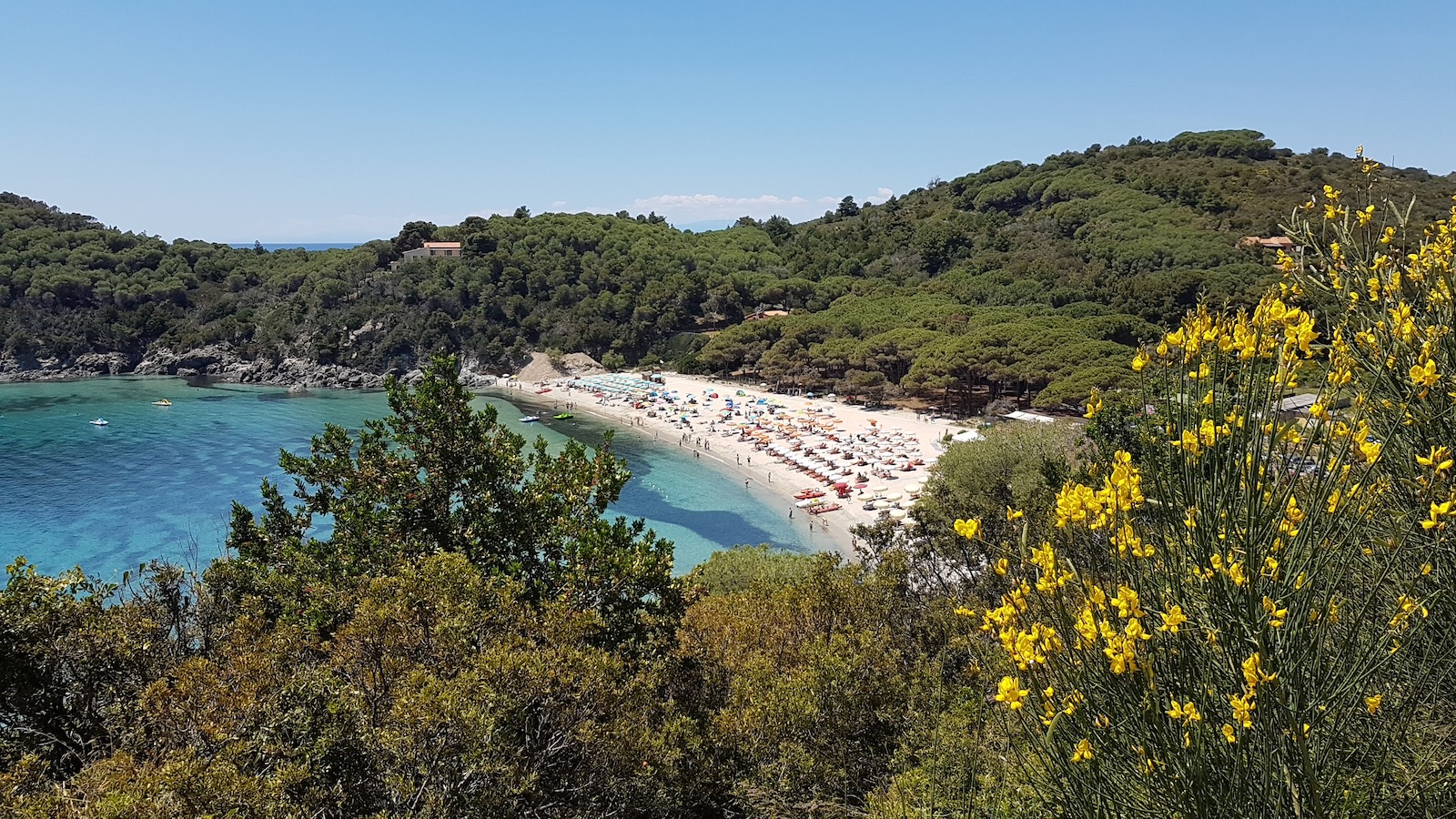 Isola d'Elba Ovest (DX) 8