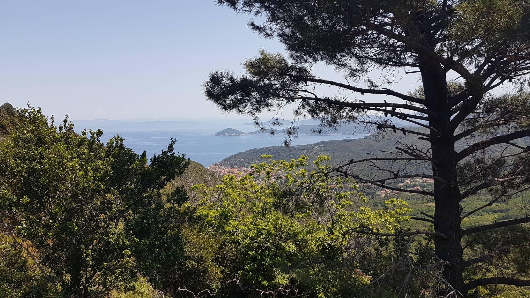 Marciana marina panorama1