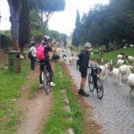 Roma ciclabile Tevere Appia11