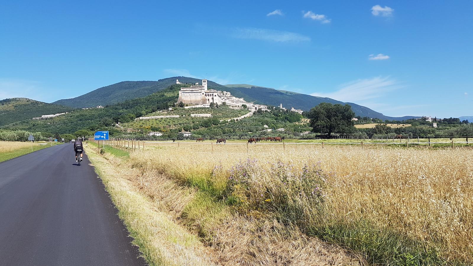 Assisi2